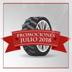 Renueva tus neumáticos antes de vacaciones